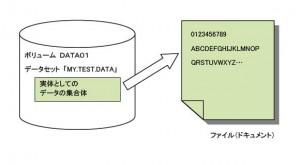 ファイルとデータセット